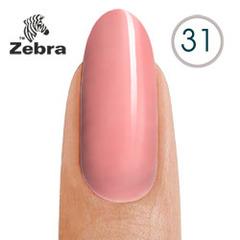 тм Zebra №31
