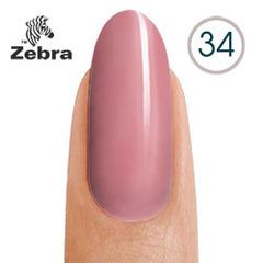 тм Zebra №34