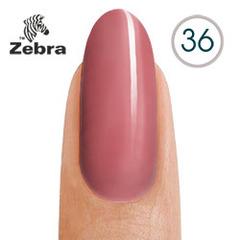тм Zebra №36