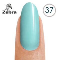 тм Zebra №37