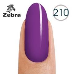 Гель лак Zebra №210