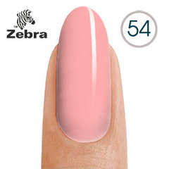 Zebra 54